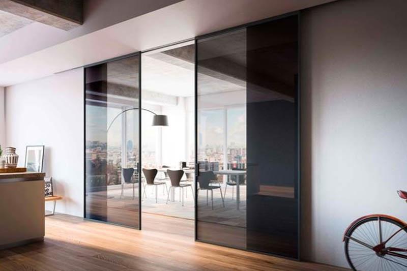 Двустворчатая раздвижная дверь Loft с тонированным стеклом
