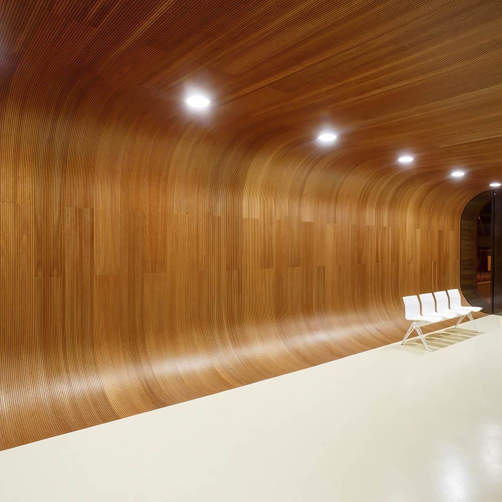 Шпонированные панели для потолка из шпона Дуба
